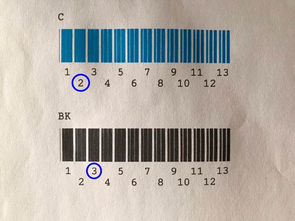 test-cabezales-1-epson-f2100
