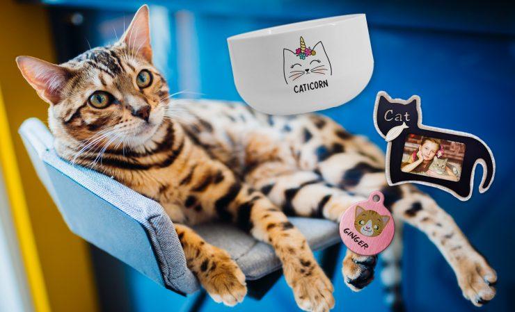 Productos personalizables para gatos