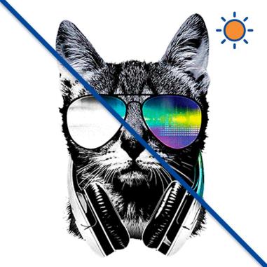 Diseño transfer Solar Gato DJ