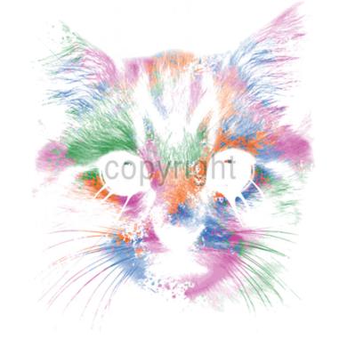 Diseño Transfer Cara de gato multicolor pack 4 uds