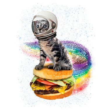 Diseño Transfer gato astronauta