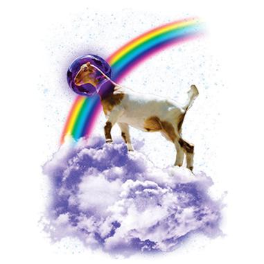 Diseño Transfer Rainbow Goat