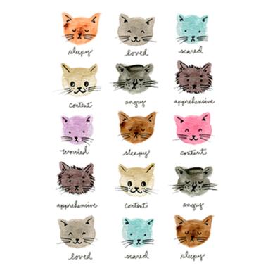 Diseño Transfer Moody Cats