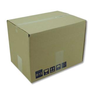 Caja B15 320 x 230 x 235 mm - Cerrada