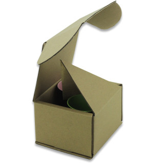 Caja de transporte para 2 tazas