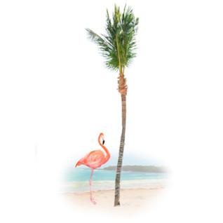 Diseño Transfer Flamenco y palmera - Pack 3 uds