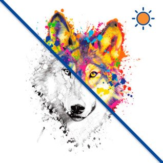 Diseño transfer Solar Neon Wolf