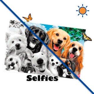 Diseño transfer Solar Dog Selfie