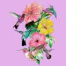 Diseño Multitransfer Colibrís y flores - Sobre tejido claro