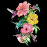 Diseño Multitransfer Colibrís y flores - Sobre tejido oscuro