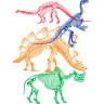 Diseño Transfer esqueletos dinosaurios - Sin fondo