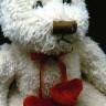 Oso Teddy de peluche - detalle
