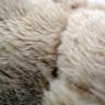 Osito Teddy portafotos - Pack de 6 uds - Detalle tejido