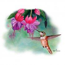 Diseño Transfer colibrí y campanillas
