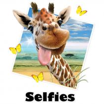 Diseño Transfer Giraffe Selfie