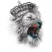 Diseño Transfer King Lion - Pack de 3 uds