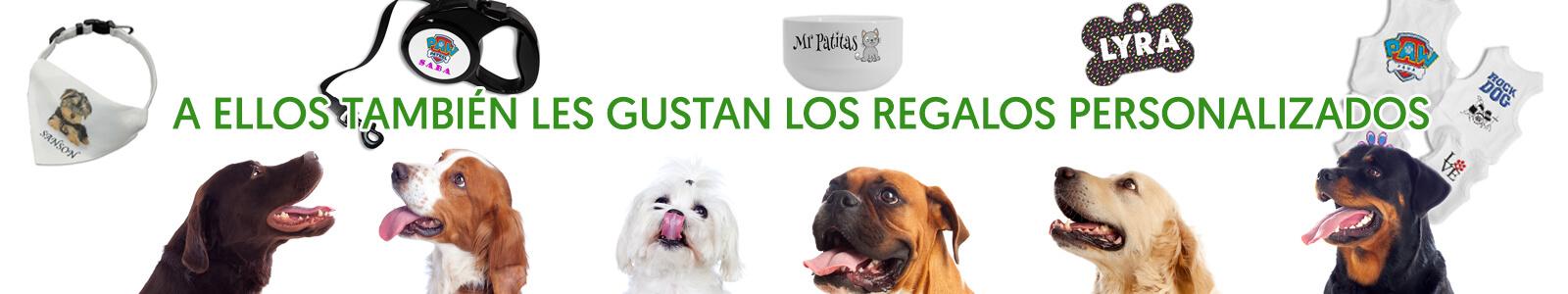Productos personalizables para mascotas