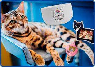 Productos personalizados para mascotas: oportunidad de negocio