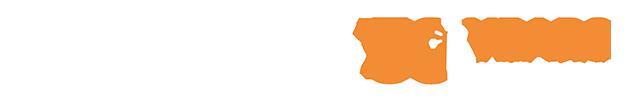 favicon/stores/2/logo-brildor-ingles.png
